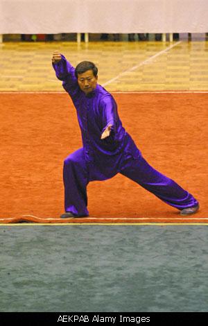 20121211120712-tai-chi-ucha-2.jpg